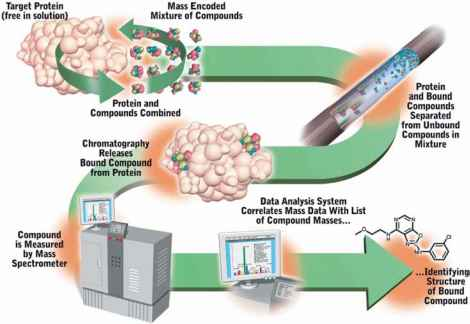 Mass Spectrometry Pharmacology