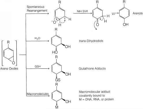 Aromatic Reaction Pathways