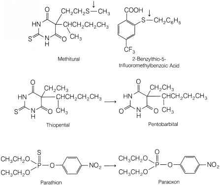 Reversible Reaction Examples Medicine