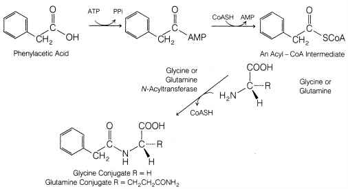 Glycine Chemical Reaction With Drug