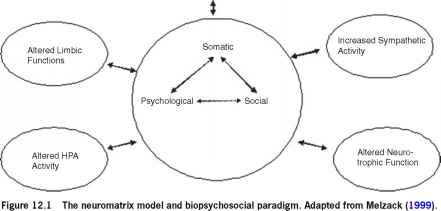 Neuromatrix theory and the biopsychosocial model pain management increased glucocorticoid activity ccuart Gallery
